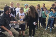 River HomeLink students take on the challenge of bird strikes