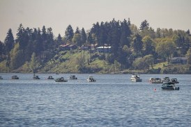 Public meeting on Columbia River fishery policy postponed; additional meetings planned