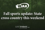 Fall sports update: State cross country this weekend