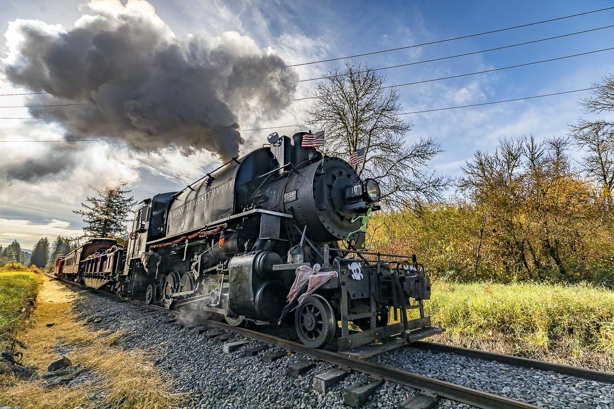 The Chelatchie Prairie Railroad will operate Saturday & Sunday, Nov. 9 & 10, with the Patriot's Weekend Special. The run will be a diesel excursion, through a 330-foot solid rock tunnel, to the Heisson area with a stop at Moulton Station to visit Yacolt Falls. Photo by Mike Schultz
