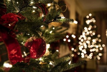Residents can reduce holiday waste by recycling Christmas trees