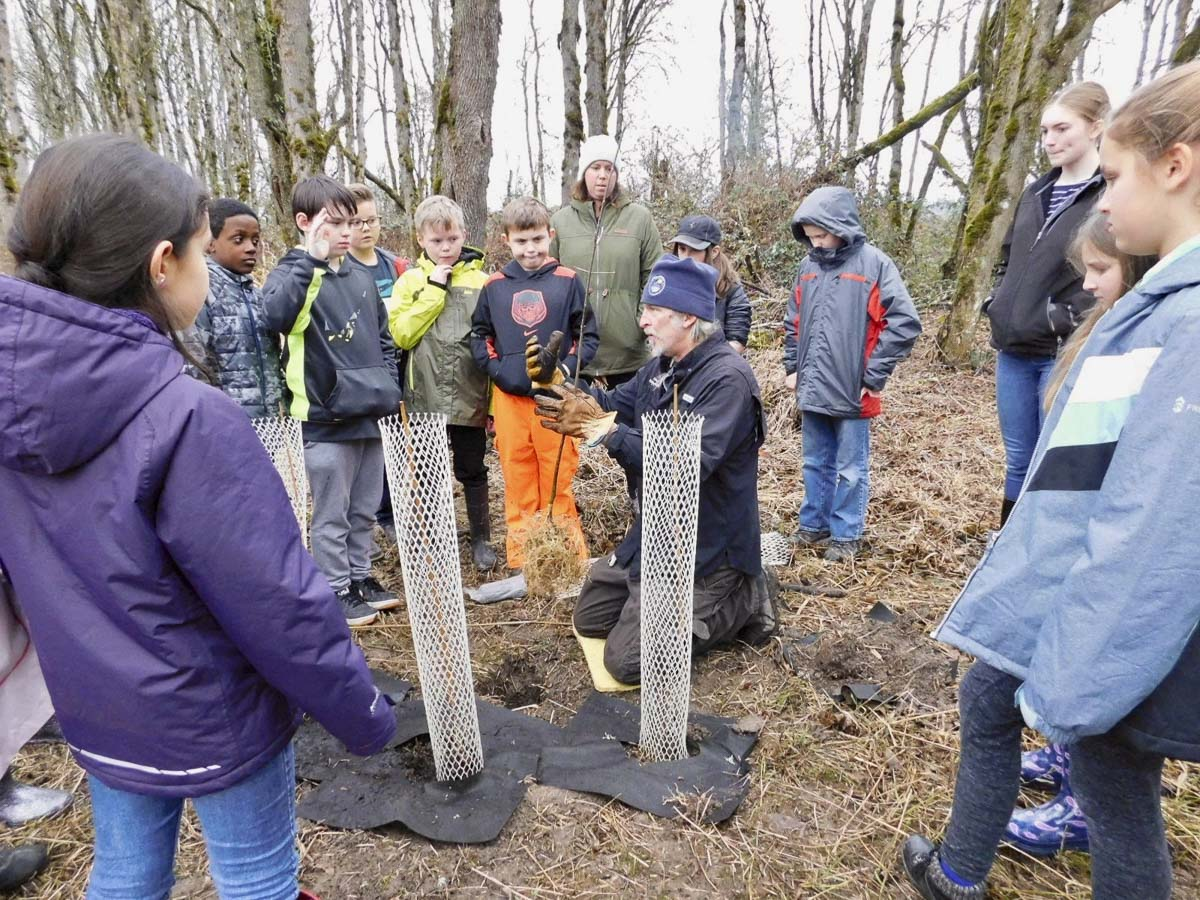 Ridgefield students work with park rangers to plant trees by the Kiwa Trail, restoring the native habitat. Photo courtesy of Ridgefield Public Schools