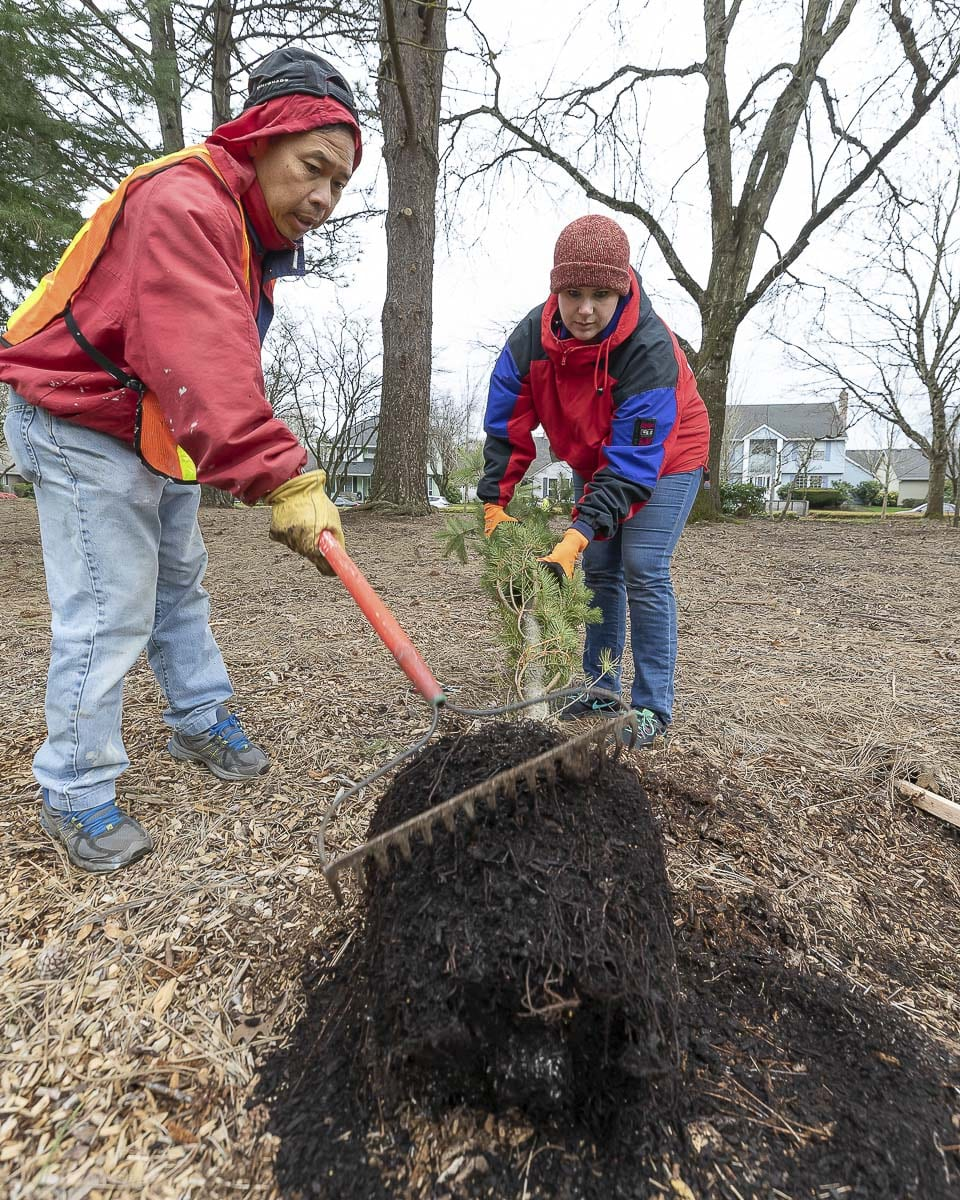 Son Do (left) and Dusti Howery (right) work on getting a new tree planted during the city of Vancouver's Day of Service in Homestead Neighborhood Park. Photo by Mike Schultz