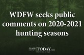 WDFW seeks public comments on 2020-2021 hunting seasons
