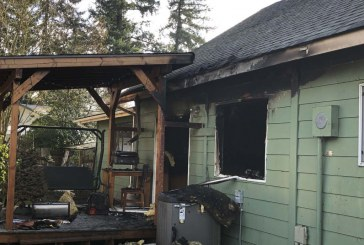 Vancouver firefighters save family dog from burning house