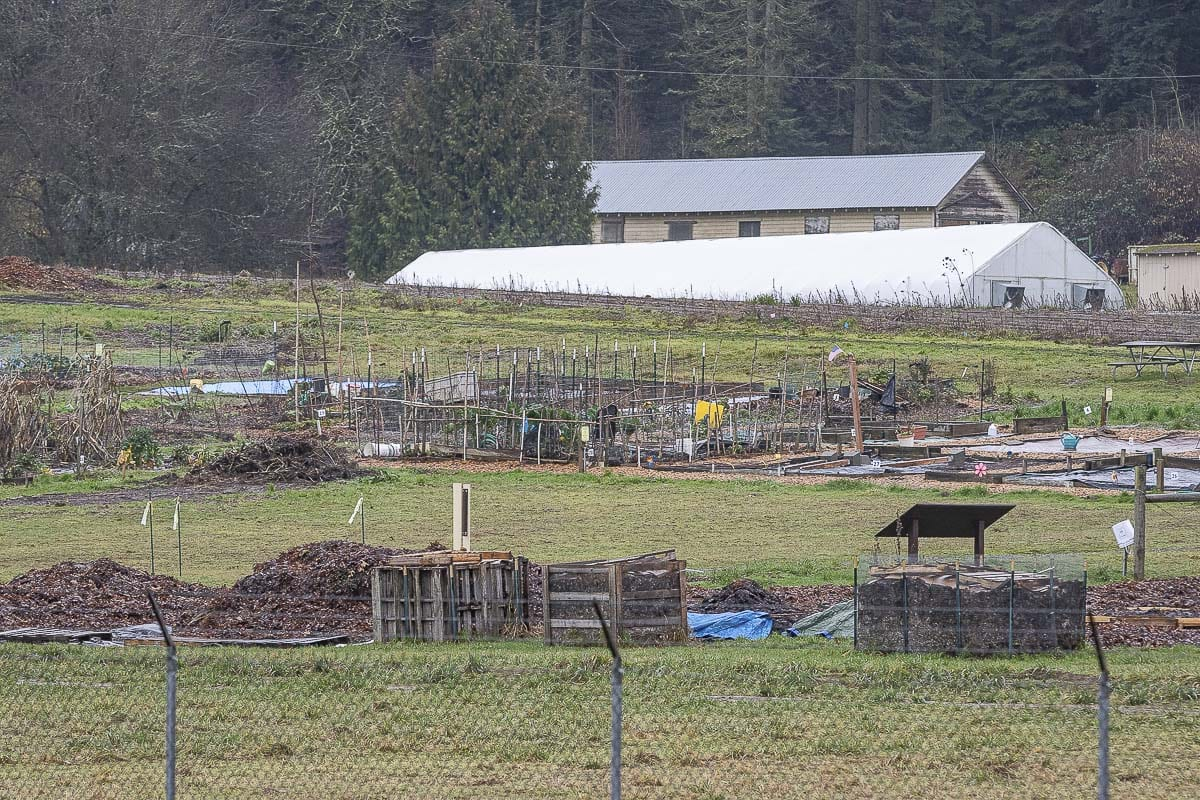 The farm produces a large amount of fresh food every year for the Clark County Food Bank, as well as offers programs for school children and veterans. Photo by Mike Schultz