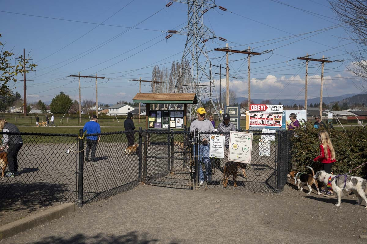 Dog owners gather at Pacific Community Park's dog park area in Vancouver during the COVID-19 outbreak. Photo by Jacob Granneman