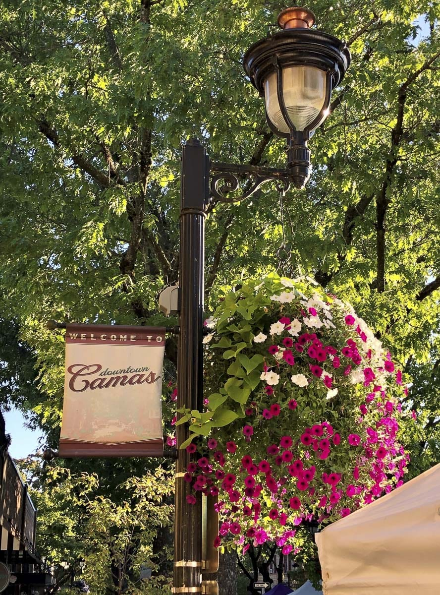The Downtown Camas Association wants to continue this tradition of beauty and charm that the flower baskets bring to Downtown Camas as a visual reminder of resiliency to merchants and the community. Photo courtesy of Downtown Camas Association