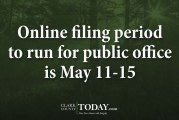 Online filing period to run for public office is May 11-15