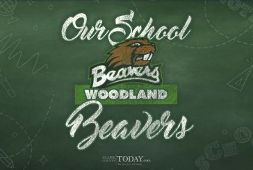 Our school: Woodland Beavers