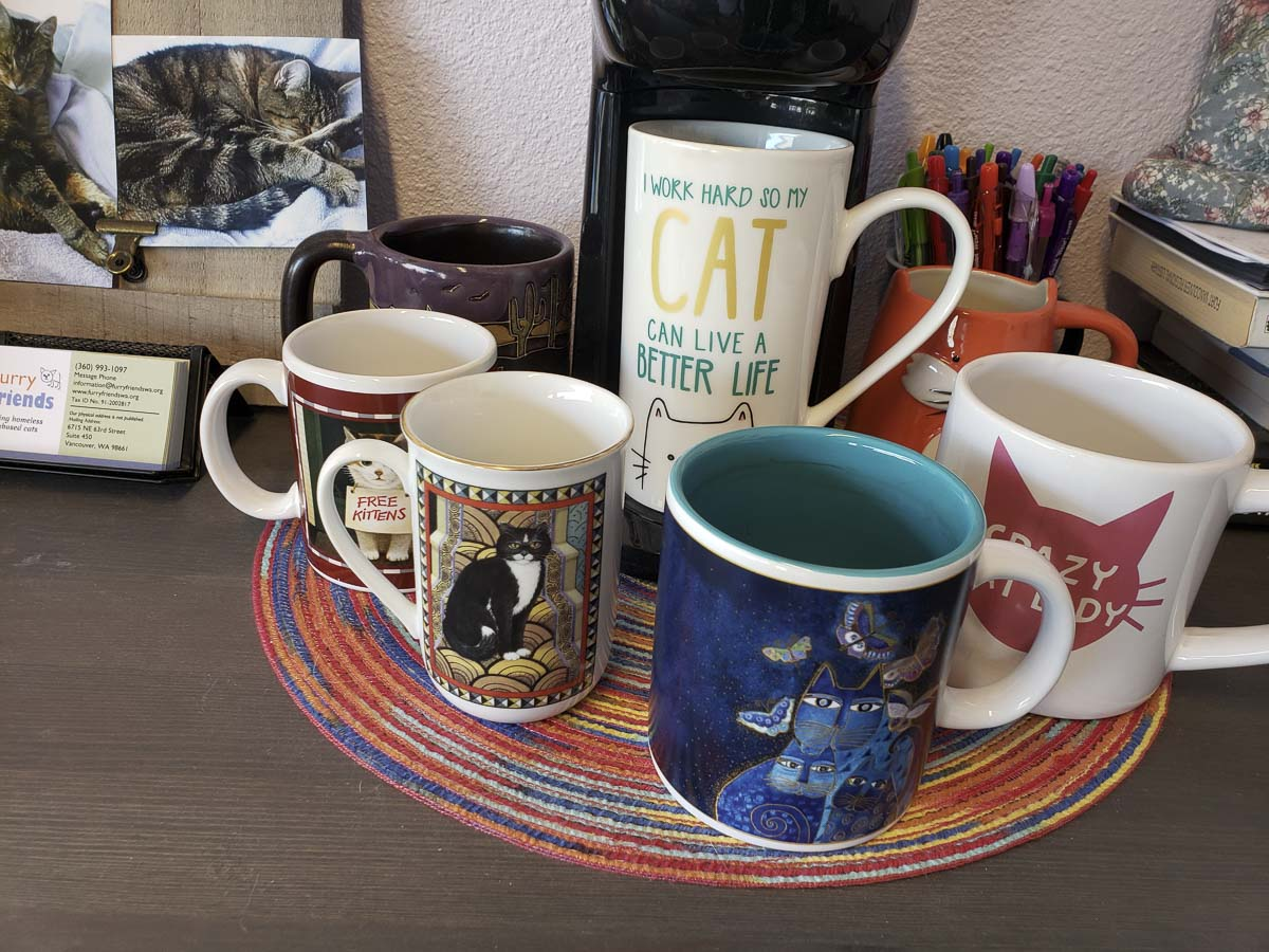 Even the coffee mugs celebrate all things cat at Cats Play While You're Away. Photo by Paul Valencia