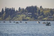 Columbia River scheduled to open for spring Chinook on select days beginning May 5