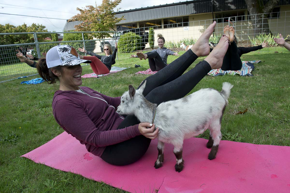 Kristina Rasmussen-Becker from Barre 3 Felida makes a furry friend during a goat yoga fundraiser that benefitted North County Community Food Bank during last year's Give More 24! event. Photo courtesy of Community Foundation for Southwest Washington