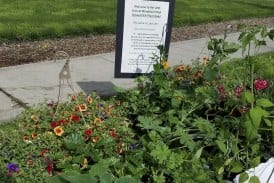 Woodland High School's annual plant sale saved through teamwork and planning