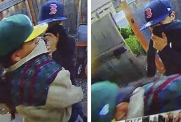 Vancouver Police seek public's health to identify assault and robbery suspects