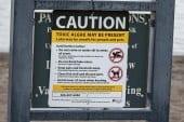 Public Health issues danger advisory for Vancouver Lake