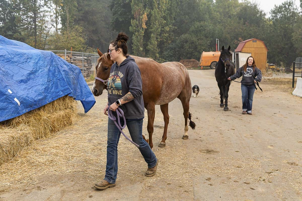 Local volunteer Amanda Vincent (foreground) and Kati Anderson of Estacada walk evacuated horses at Clark County Fairgrounds. Photo by Mike Schultz