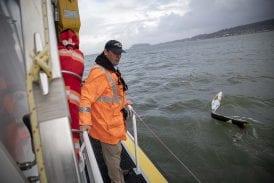 Vancouver school to implement virtual mini-boat program