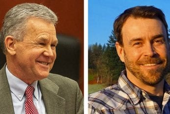Election 2020: Clark County Council, District 4 seat