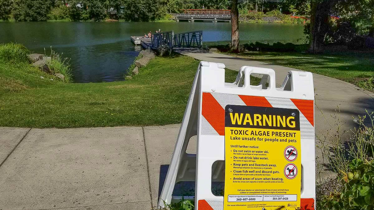 Clark County Public Health officials are once again warning area residents against swimming or recreating at Lacamas Lake (shown here) or Round Lake. Photo courtesy of John Ley