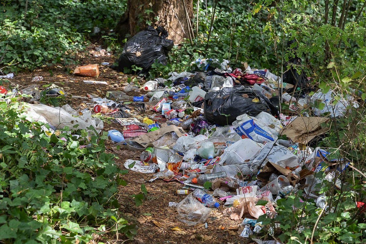 An abandoned campsite near the Ellen Davis Trail, close to Leverich Park, was full of garbage. A neighborhood group cleaned this site on Sunday, finding and discarding more than 50 hypodermic needles. Photo by Mike Schultz