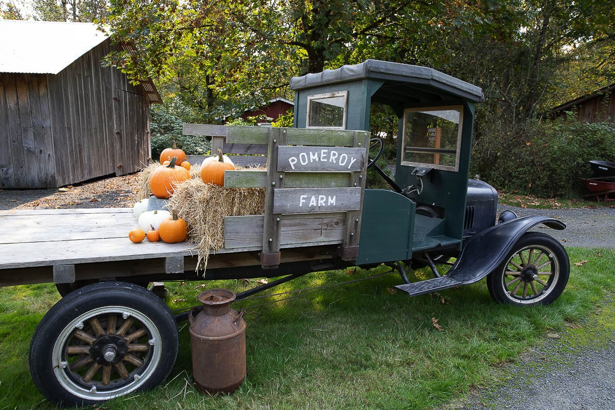 Pomeroy Farm is still having a traditional viewing of its October fun, but with social distancing rules in place. Photo by Mike Schultz