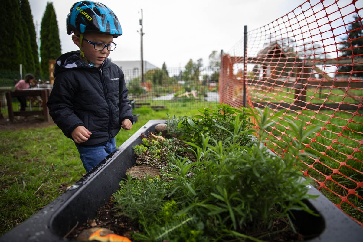 "A preschool student interacts with a special garden plot known as ""The Jungle"" where children learn about plants and wildlife. Photo by Jacob Granneman"