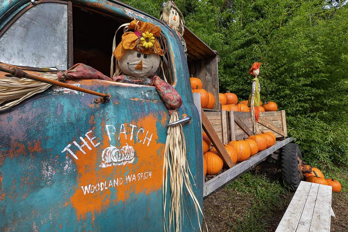 The famous old truck at The Patch in Woodland is seen here with its scarecrow driver. Photo by Mike Schultz