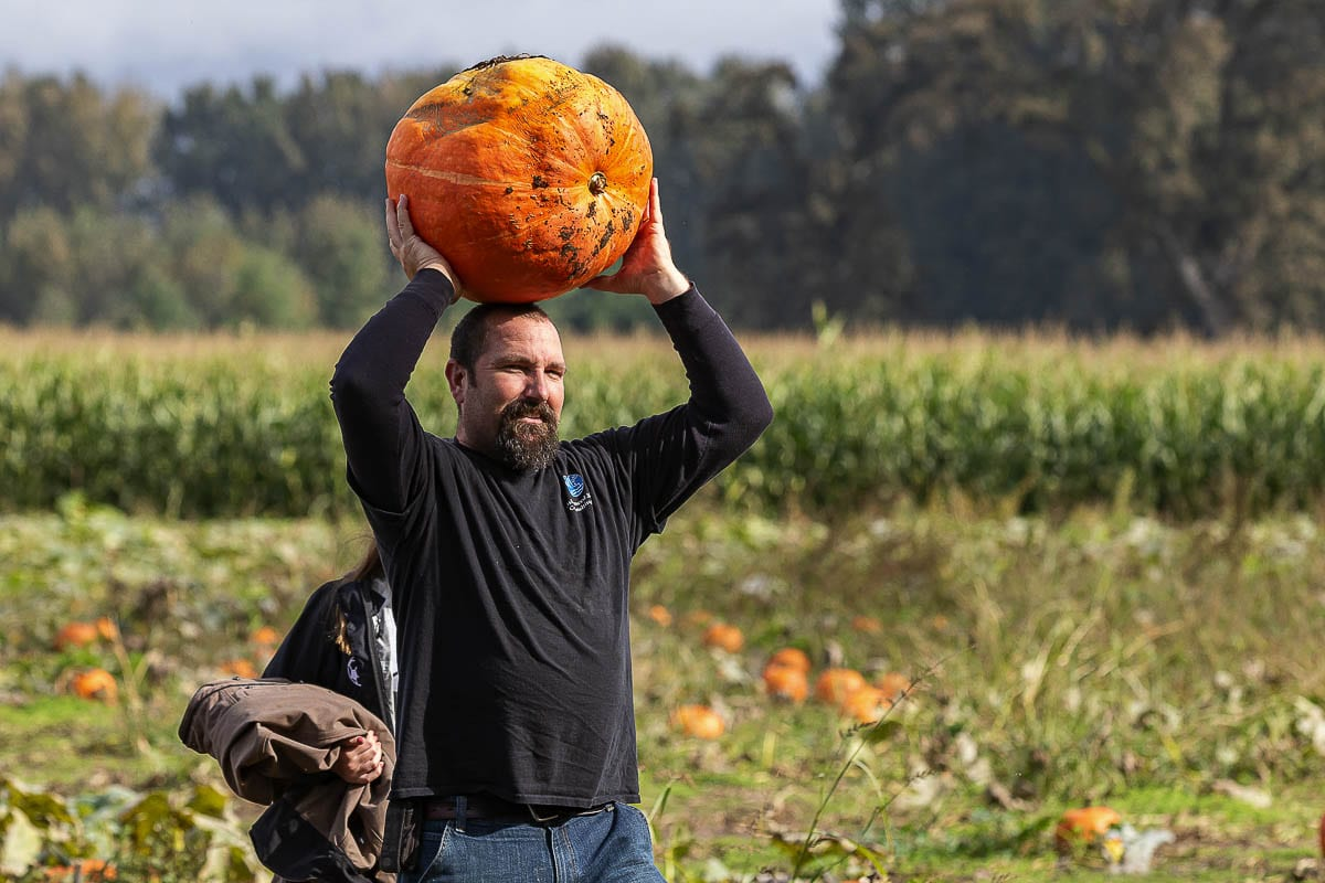 Travis Buck of Woodland carries his monster pumpkin back from the fields while at The Patch. Photo by Mike Schultz