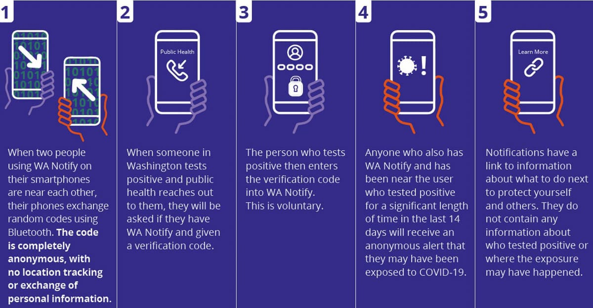The new WA Notify app could tell you if you've been exposed to someone who tested positive for COVID-19. Image courtesy Washington Department of Health
