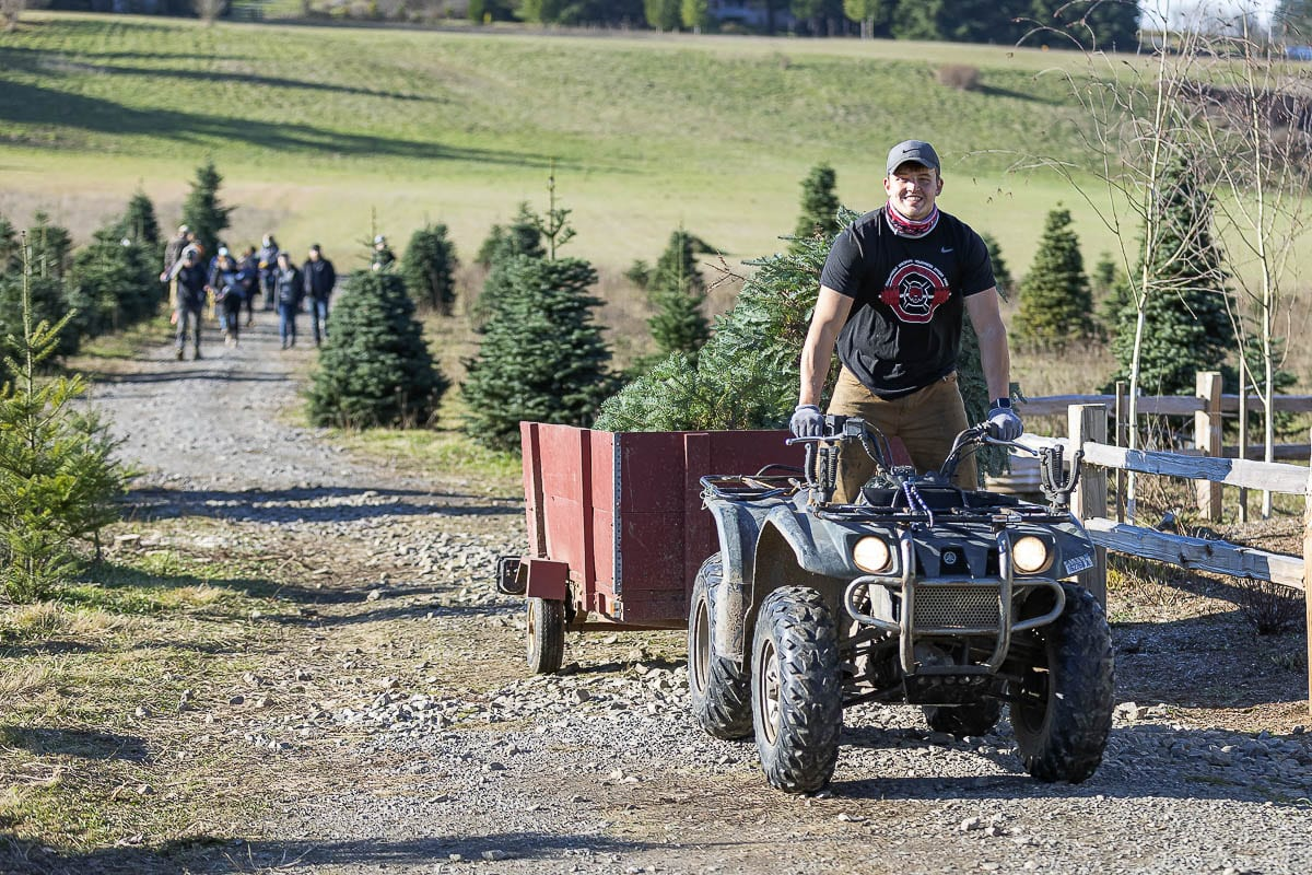 Tyler Flanagan drives an ATV hauling trees at his father's Christmas tree farm in Ridgefield. Photo by Mike Schultz