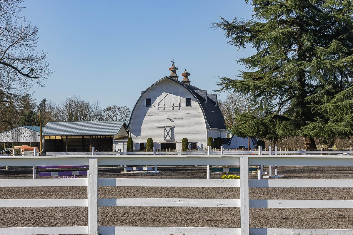 Clark County is looking at ways to help equestrian businesses get in compliance with the law by simplifying the code. Photo by Mike Schultz