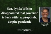 Sen. Lynda Wilson disappointed that governor is back with tax proposals, despite pandemic