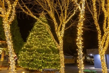 Washougal Tree Lighting ceremony held as a virtual event