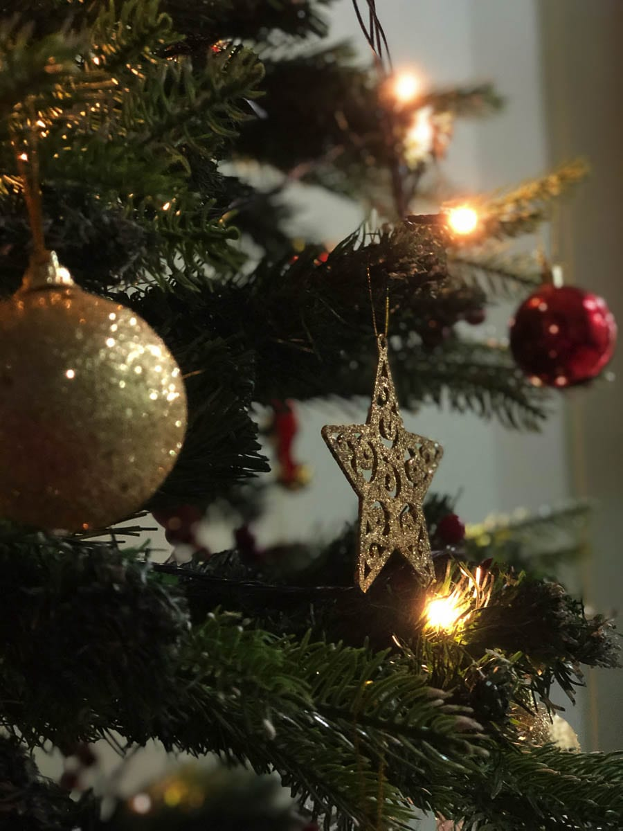 Waste Connections will pick up Christmas trees from customers with yard debris or organics collection or regular garbage service available in most parts of the county.