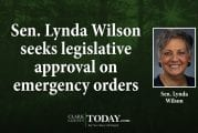 Sen. Lynda Wilson seeks legislative approval on emergency orders