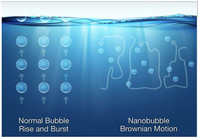 Nanobubbles do not rise to the surface but remain dissolved in the water. This adds oxygen which increases water quality and helps to break down phosphorus and other harmful nutrients. Graphic from Moleaer