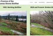 Lacamas Shores biofilter polluting Lacamas Lake