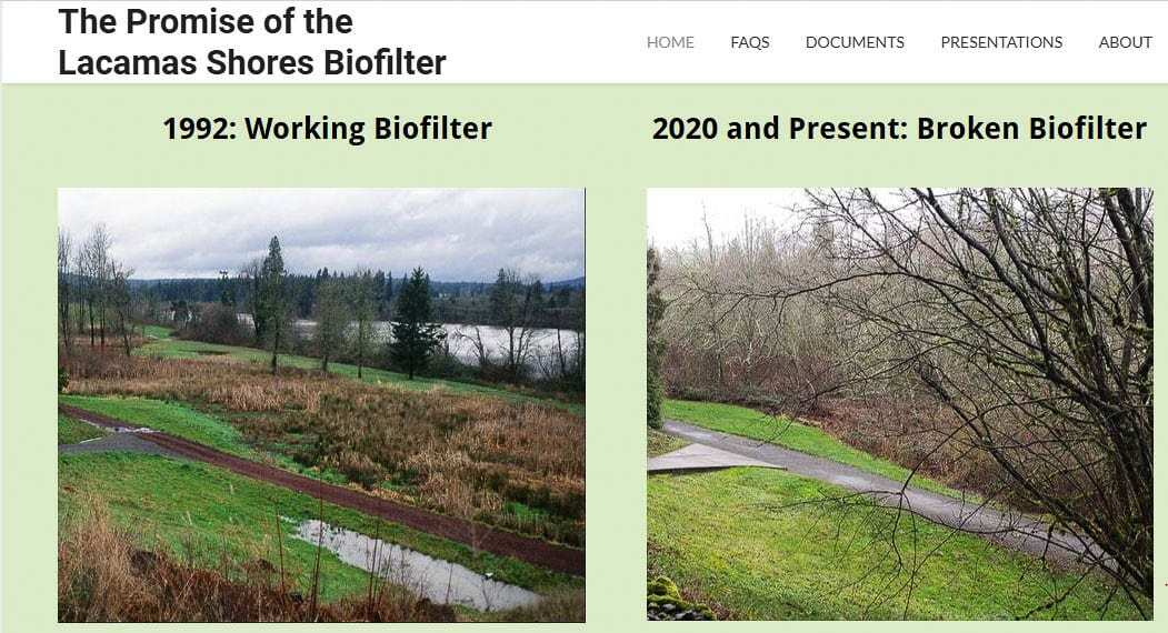 The left photo shows the original, functioning stormwater biofilter at the Lacamas Shores development in 1992. Due to a lack of maintenance, today it has become an overgrown mix of trees and weeds and brush. Uncontained waterflow has carved mini streams for water to run in heavy rains. The biofilter now adds phosphorus and other elements rather than cleaning the water. Graphic Lacamasshoresbiofilter.org