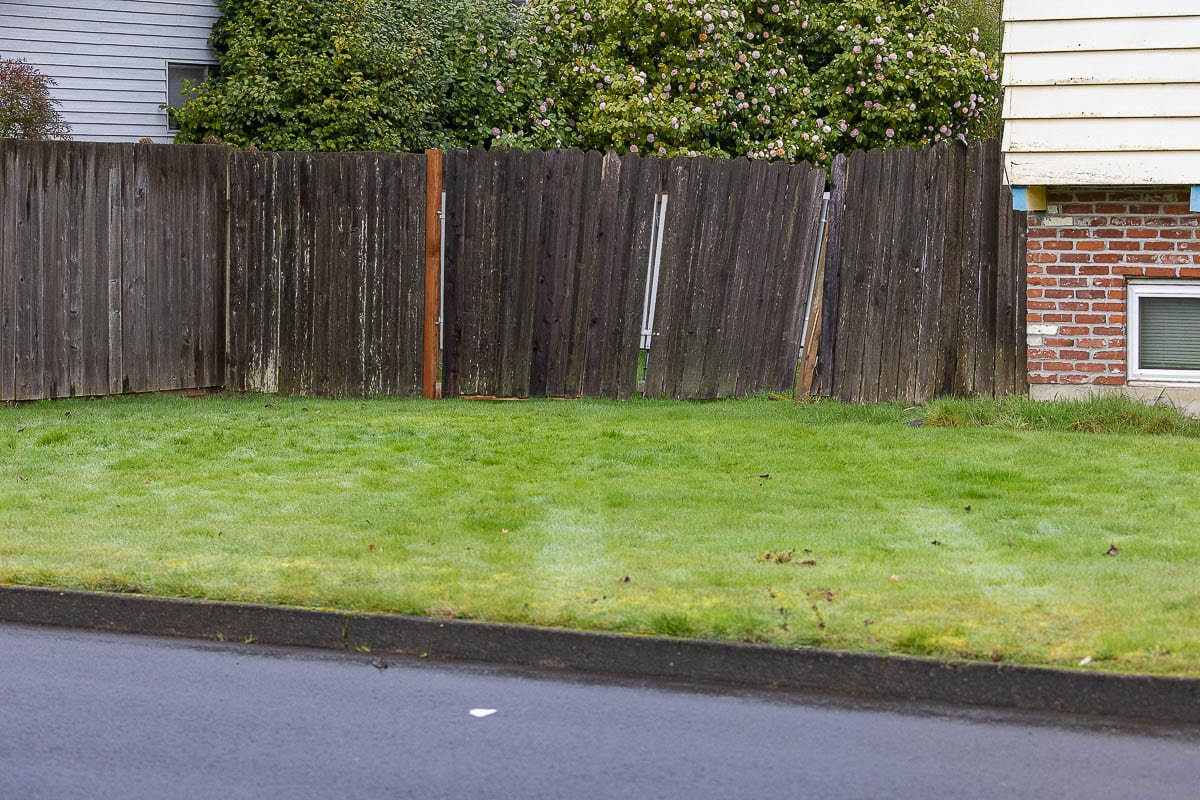 Tire tracks are visible in the lawn of this Hazel Dell home near the location of an office-involved shooting that took place Feb. 4. Photo by Mike Schultz