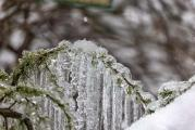 Freezing rain leads to power outages, road closures around Clark County
