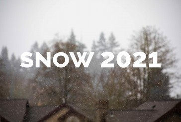 A Snow Story 2021: Some relief from the monotony