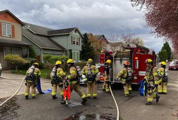 Firefighters save cat, kittens from house fire in Felida