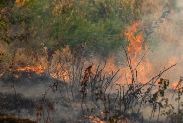 Clark County Fire Marshal extends temporary burn ban to April 27