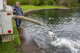 Trout fishing season kicks off April 24 as hundreds of lowland lakes open, trout derby gets underway