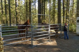VIDEO: Rock Creek Horse Camp gets an upgrade with the help of loving volunteers