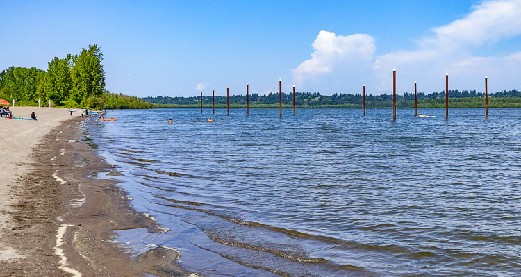 Clark County Public Health has issued a danger advisory at Vancouver Lake after test results revealed elevated levels of cyanotoxins in the water at the swim beach and flushing channel.