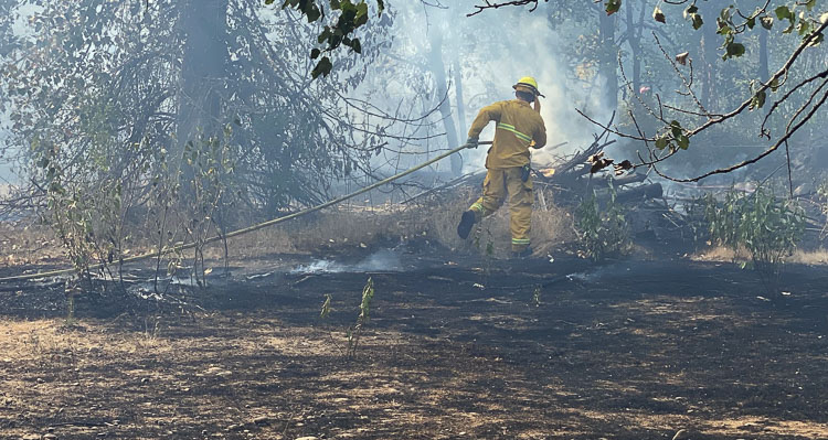 Firefighters battled a stubborn brush fire that sent smoke billowing towards I-5 near Klineline Pond.
