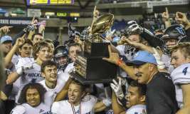 HS football: Nine area playoff teams all have a playoff past, too
